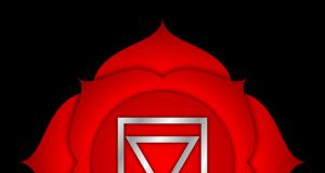 Çakra (Kök Çakra)